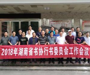 湖南省书法家协会行书委员会工作会议在长沙召开