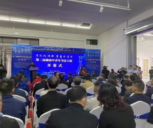 第二届湖南中青年书法大展在湖南省展览馆开幕
