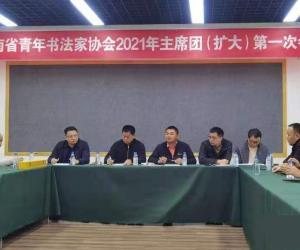 湖南省青年书协2021年第一次主席团(扩大)会议召开